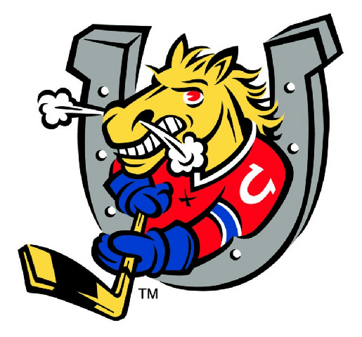 Tyler Doig - Barrie Colts Photo